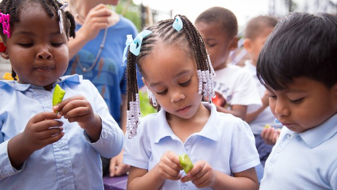 Stop Eliminating Gifted Programs and Calling It 'Equity'